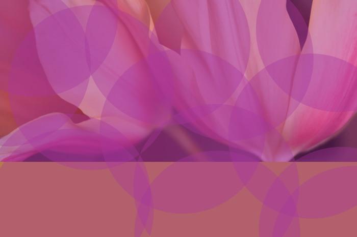 DSC_5503 30x20 c 13x9.jpg